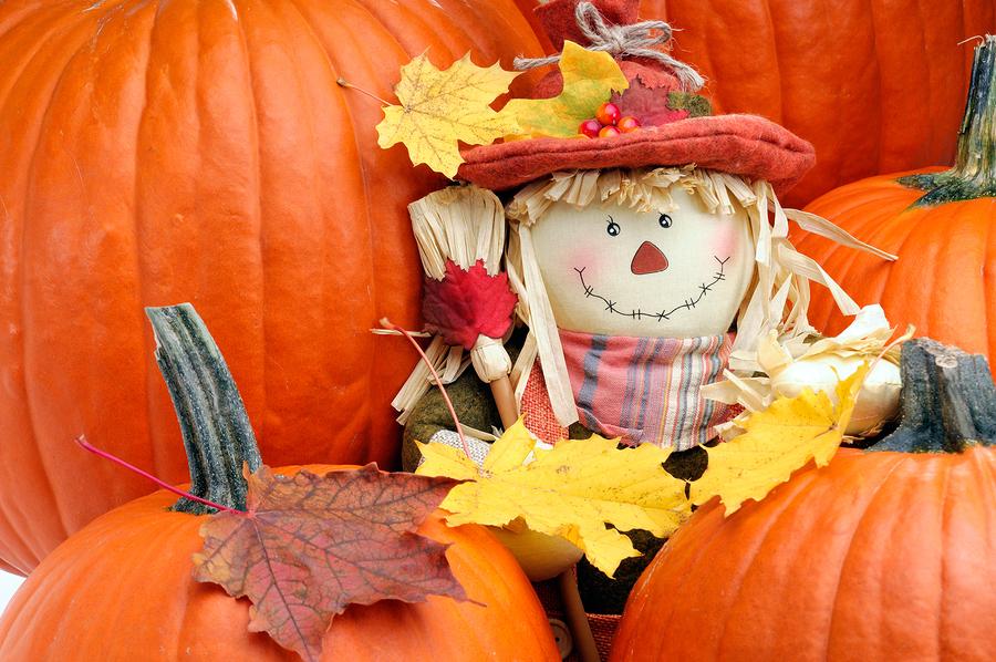 bigstock fall color 9820595